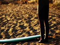 Surferc1w