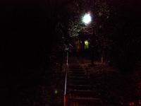 Streetlightb1w