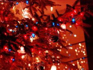 Christmasredtreea5w_2