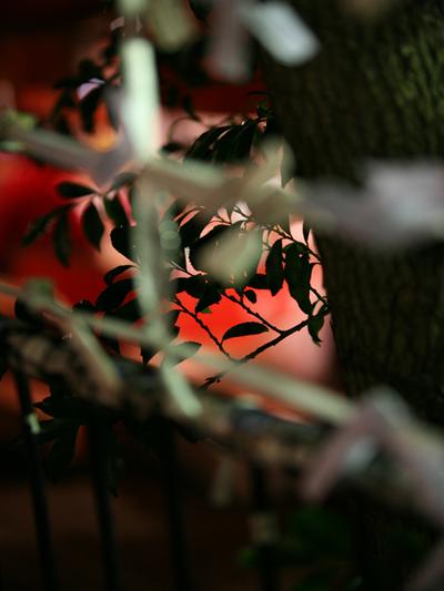 Ohtori_autumn_festival001w