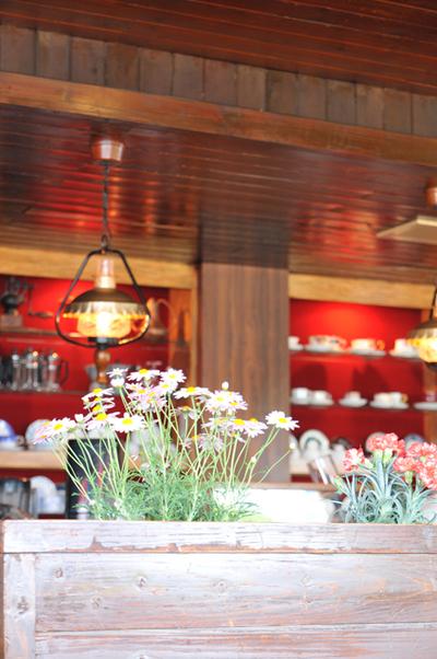 Cafebridge02w