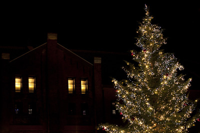 Christmastree002w