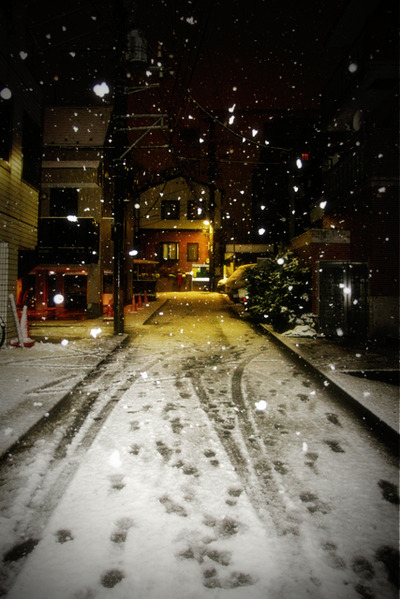 Snow_falls_in_the_city009w