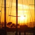 バークレイの夕陽