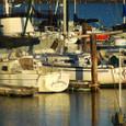 トレジャーアイランドのヨット