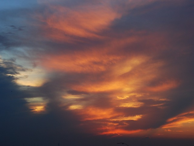 Evening_sungw