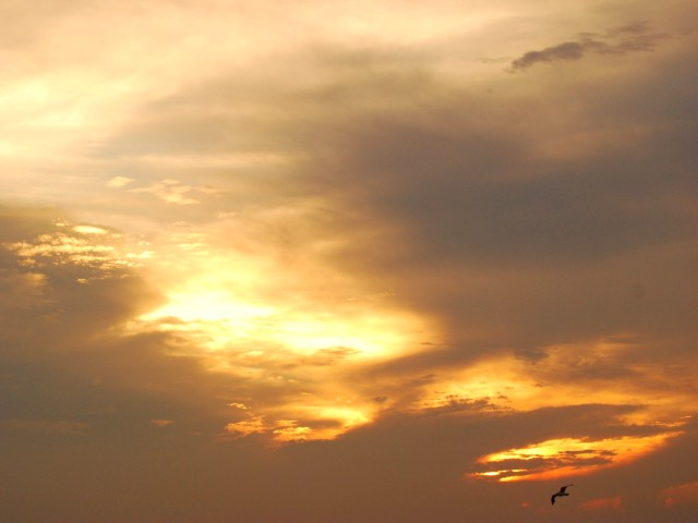 Evening_sunhw
