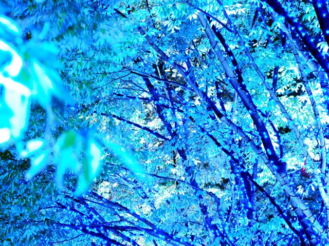 Blueilluminationa1w