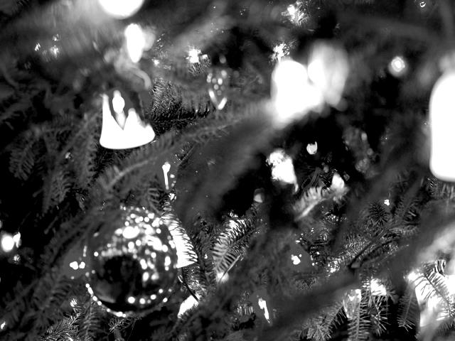 Christmasredtreea4w_2