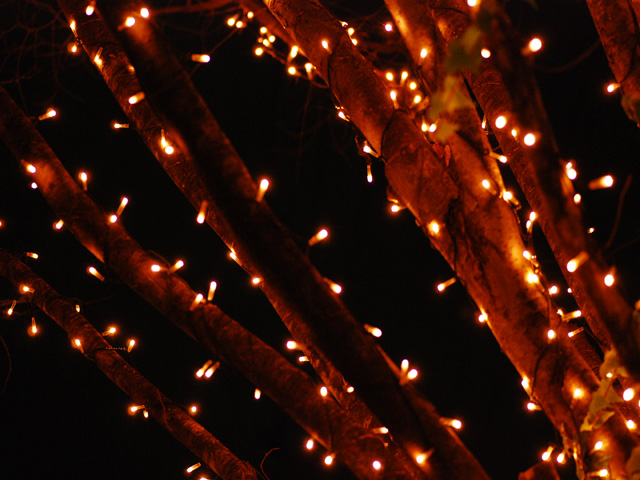 Illuminationb1w