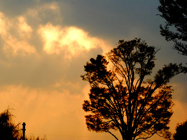 Evening_sund