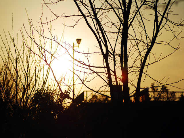 Evening_sunt1w