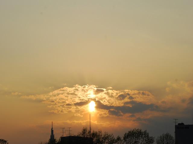 Evening_of_springa1w