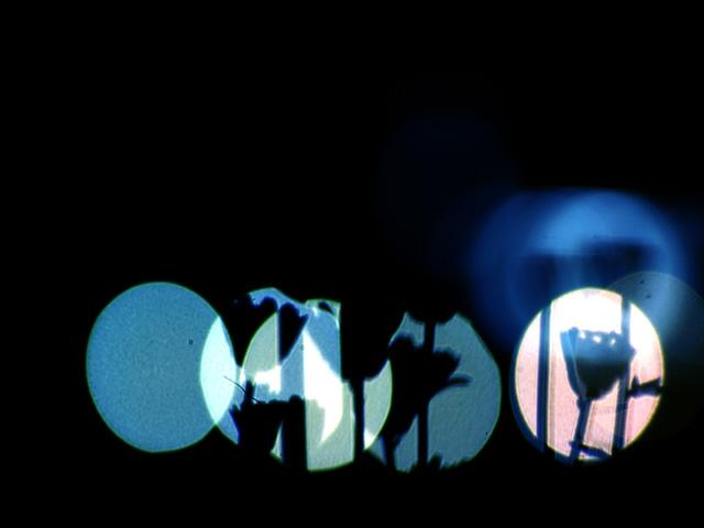 Silhouettec1w_2
