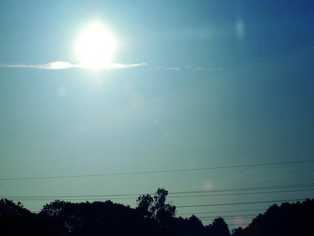 Morning_suna1w_2