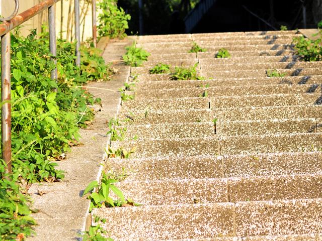 Stairsa2w